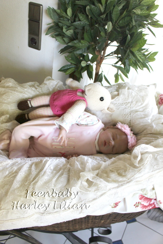 Harley-Lilian IMG_9331