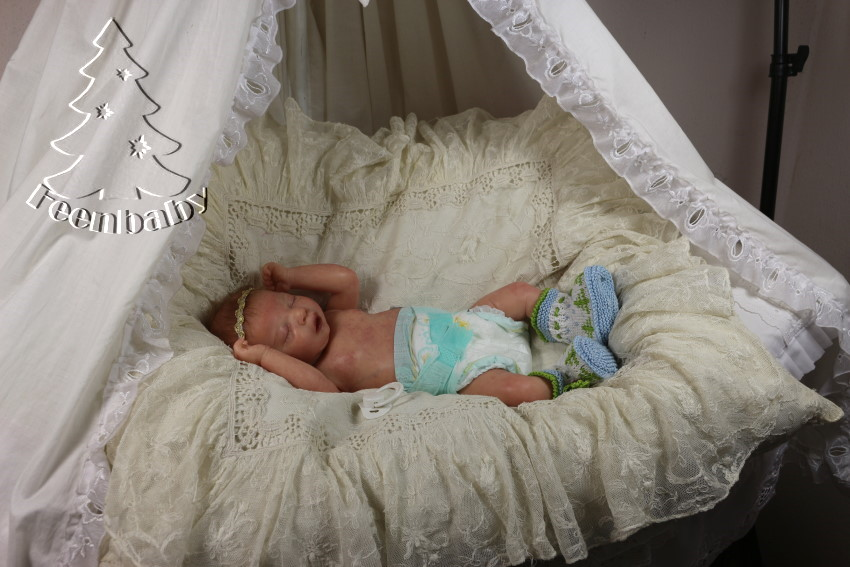 Stella, mein Weihnachtsbaby IMG_0928