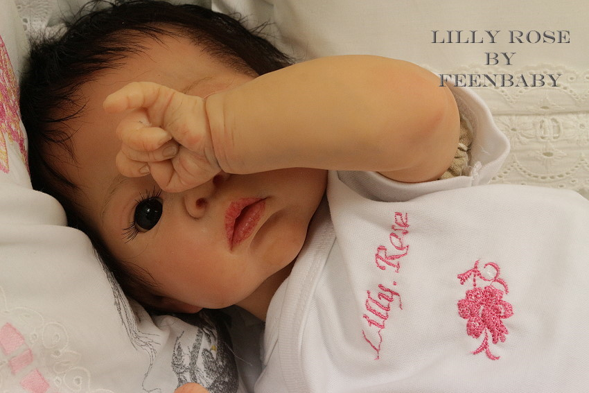 Lilly Rose IMG_2050